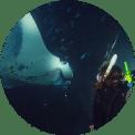 kursy nurkowania Wrocław, nurkowanie nocne