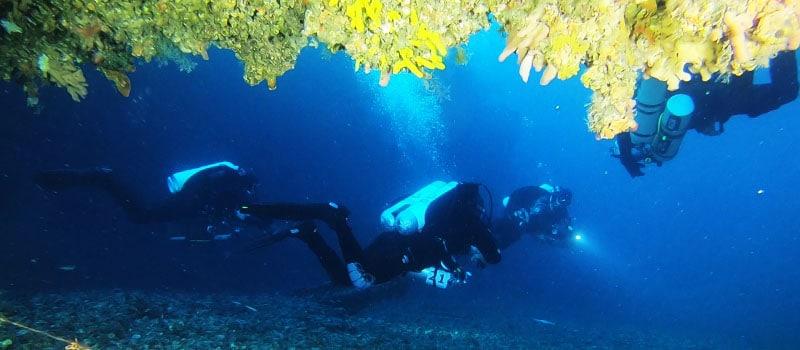 kurs nurkowania PADI Tec45