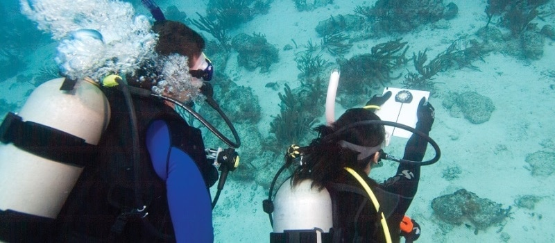 kurs nawigacji podwodnej